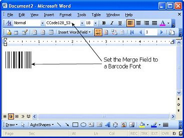 Using the Barcode Font with Microsoft Office Word